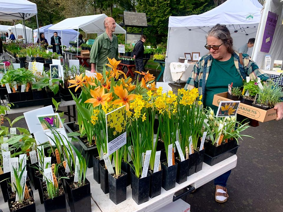 37_annual_spring_annual_plant_sale